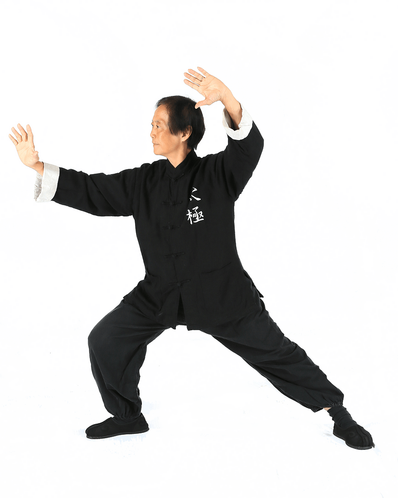 master sui huang